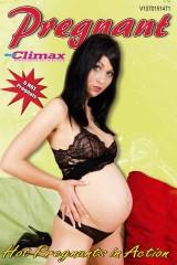 Pregnant No.01